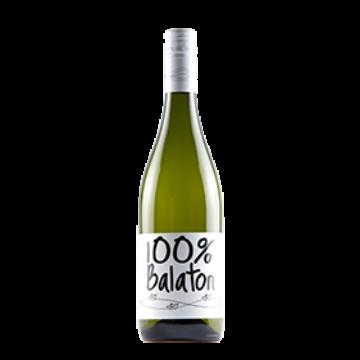 Homola 100% Balaton 2016
