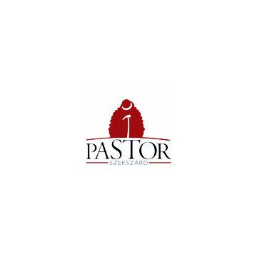 Pastor Siller 2017