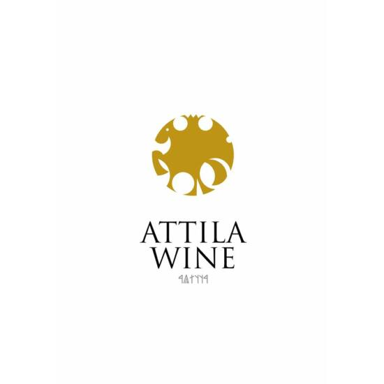 Attila Pince borbemutató részvételi jegy