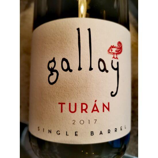 Gallay Turán 2017